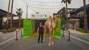 في مارس.. الفن يأتي إلى الحياة ويملأ شوارع دبي!