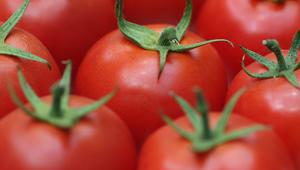 جوز وطماطم ورمان وأفوكادو..أطعمة