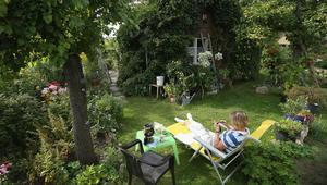 إجعل حديقة منزلك الصغيرة جنّتك الكبيرة.. بخمس خطوات
