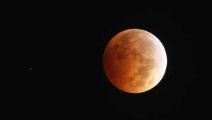 """""""ناسا"""" تسخر من توقعات نهاية العالم خلال أيام مع اقتراب """"قمر الدم"""" الرابع"""