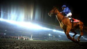 استَعِد لياقة حصانك البدنية... تدريجيا