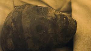 مومياء ملفوفة بالكتان للملك توت عنخ آمون في قبره تحت الأرض