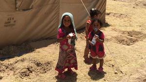 الأمم المتحدة: هروب أكثر من 12 ألف شخص من الفلوجة إلى مخيمات آمنة