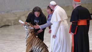 بالفيديو: بابا الفاتيكان في مواجهة نمر.. من يخاف من؟