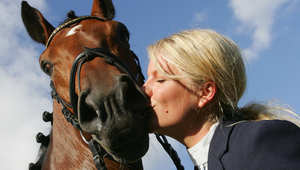 شجّع حصانك على حسن التصرف باستعمال هذه المكافآت