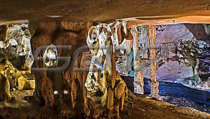 التقطها حلمي يوسف في قرية ميرابوه بماليزيا