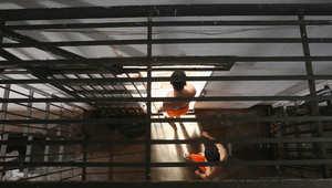 باحث بشؤون الإرهاب يحلل ظاهرة كوليبالي بفرنسا وحسين بالدنمرك: أفراد العصابات يتحولون إلى التشدد الديني ضد الغرب الكافر