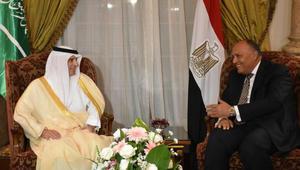 الجبير وشكري: ملتزمون بالتعاون للتصدي للإرهاب ومن يدعمه