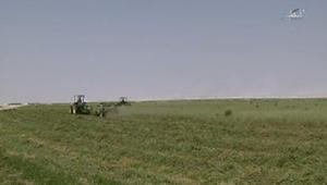 """قطر تطلق مبادرة """"اكتفاء"""" لتحقيق الأمن الغذائي عبر دعم الزراعة المحلية"""