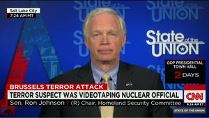 """رئيس لجنة الأمن القومي في مجلس الشيوخ لـCNN: """"داعش"""" قد يهاجم المنشآت النووية في أوروبا وأمريكا"""