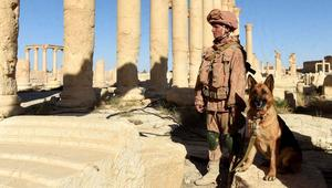 ناشطون: غارات روسية مكثفة تدفع داعش إلى محيط مدينة تدمر