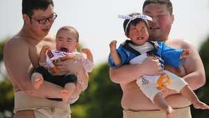 """اسم المسابقة """"ناكي-زومو"""" أي مسابقة بكاء الرضع، وهي احتفال للاعتقاد التقليدي بأن الرضيع الذي يبكي ينمو بسرعة أكبر."""