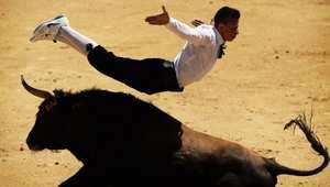 مصارعة الثيران غير الدموية في مدريد.