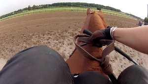 سباق الخيول كما لم تراه من قبل.. هذا ما يراه الفارس خلال السباق