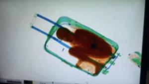 بالفيديو.. كشف عملية لتهريب طفل في إسبانيا داخل حقيبة