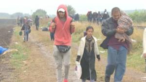 اللاجئون على الحدود الصربية المجرية تحت المطر