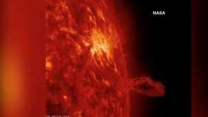 بالفيديو.. ناسا ترصد الطاقة الحيوية للشمس