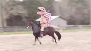 """بالفيديو: رجل """"يتحامق"""" على ظهر حصان وهو يرتدي زي ديناصور"""