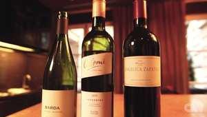 """خبيرة تقدم أربع نصائح """"أساسية"""" عند شراء النبيذ"""