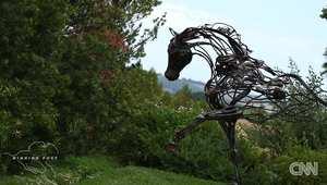 رفاهية في عالم الفروسية بلا حدود.. تذوق النبيذ من على ظهور الخيول في هذه المزرعة فقط!