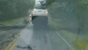 سيدة تنجو من الموت بعد سقوط شجرة أمام سيارتها المتحركة بسبب إعصار إرما