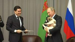 """الرئيس الروسي يُهدى كلباً.. تعرف على """"بوتين محب الحيوانات"""""""