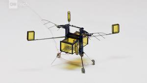 شاهد.. نحلة آلية يمكنها التحليق والسباحة والقفز من على الماء