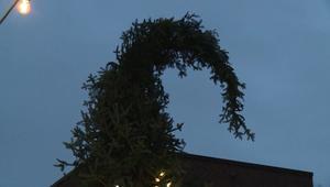 """شجرة كريسماس """"قبيحة"""" تزين مدينة مونتريال.. شاهد ردود الفعل"""