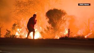 شاهد.. رجل يخاطر بحياته لإنقاذ أرنب من النيران