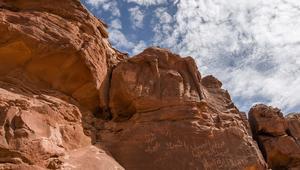 شاهد.. اكتشاف نقش لجمل منحوتاً في جبال السعودية