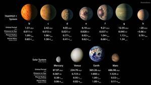 7 فرص للحياة خارج الأرض؟ علماء الفلك يكتشفون 7 كواكب بحجم الأرض تدور حول نجم قريب