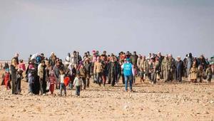 """""""زكاة للاجئين"""".. الأمم المتحدة: حصلنا على فتاوى تُبيح لنا جمع الزكاة"""