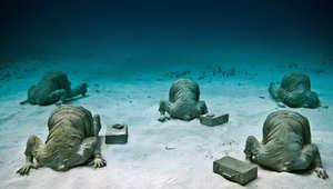 عالم بديل تحت الماء.. حتى يصبح الخيال أبعد من الأحلام