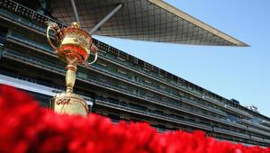 ما هو سر الحصان الذي سيفوز بأغلى كأس لسباق الخيول في العالم؟