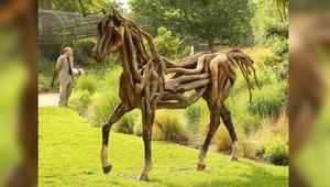 هكذا تحمي حصانك من الأمراض الخطيرة التي تنقلها الحشرات