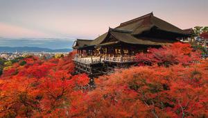 ثمانية معابد استثنائية تخفي بين جدرانها تاريخ وحضارة اليابان