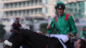 """اختتام فعاليات كأس دبي العالمي للخيول.. و""""كاليفورنيا كروم"""" يفوز بالجائزة الأولى"""