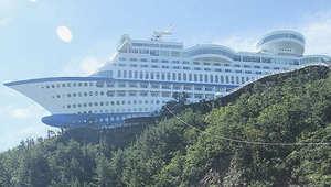 طائرة معلقة على الأشجار وسفينة راسية على جبل... فنادق غريبة لن تصدق وجودها فعلياً