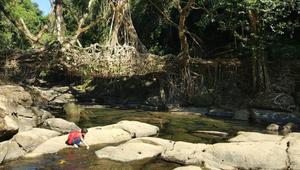 في ميغالايا الهندية.. ينام الناس بين السحب