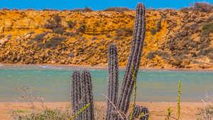 """صحراء """"سرية"""" تواجه رمالها سحر الشواطئ الكاريبية"""