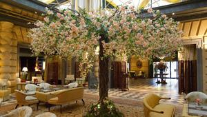 شاهد الطرق الرائعة التي تتزين بها هذه الفنادق بالأزهار