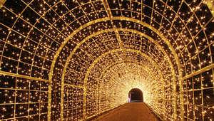 ما هي الدولة التي تستخدم ملايين المصابيح الملونة لتزيين ليالي الشتاء الطويلة؟