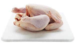 الدجاج والحبش المفروم