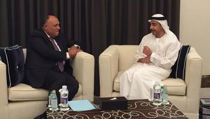 وزيرا خارجية الإمارات ومصر يبحثان سبل مواجهة التدخلات الخارجية
