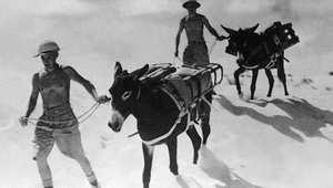 75 سنة على بداية الحرب العالمية الثانية.. صور لا تنسى من مصر وليبيا وتونس والجزائر والمغرب
