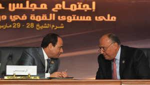 """لسيسي يعلن قرار تشكيل قوة مشتركة وبيان شرم الشيخ يعد بـ""""صون الحريات"""""""