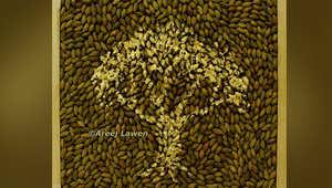 أريج لاون.. فنانة فلسطينية ترسم بحبيبات الزيتون هوية شعبها