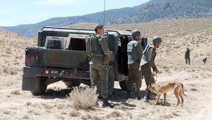 مقتل ثلاثة جنود وإصابة سبعة في هجوم لمجموعة مسلحة غرب تونس