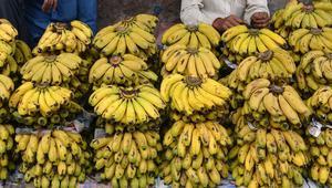 ارتفعت أسعاره بشكل قياسي.. الجزائر تمنح رخص استيراد 90 ألف طن من الموز لستة أشهر