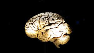 حقيقة لا خيال في ...2015 سماعة تحول الدماغ إلى بطارية تعيد شحنك بالطاقة وتعدّل مزاجك